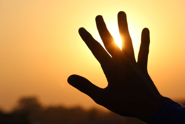 Hand at Sunset