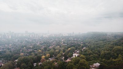 A City Meets The Woods