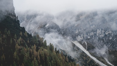Bird's Eye Photography of Mountain Alps And Forest with Fog