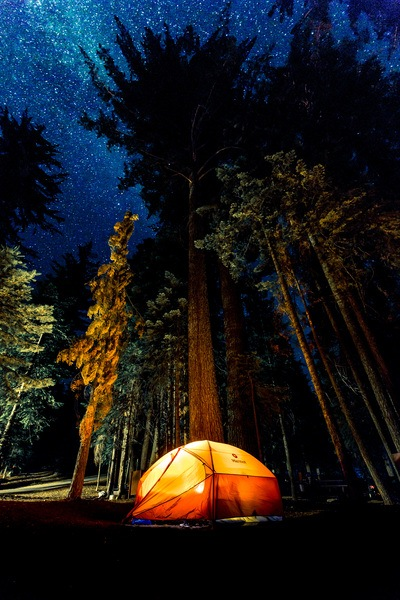 Camping in Forest at Nightime