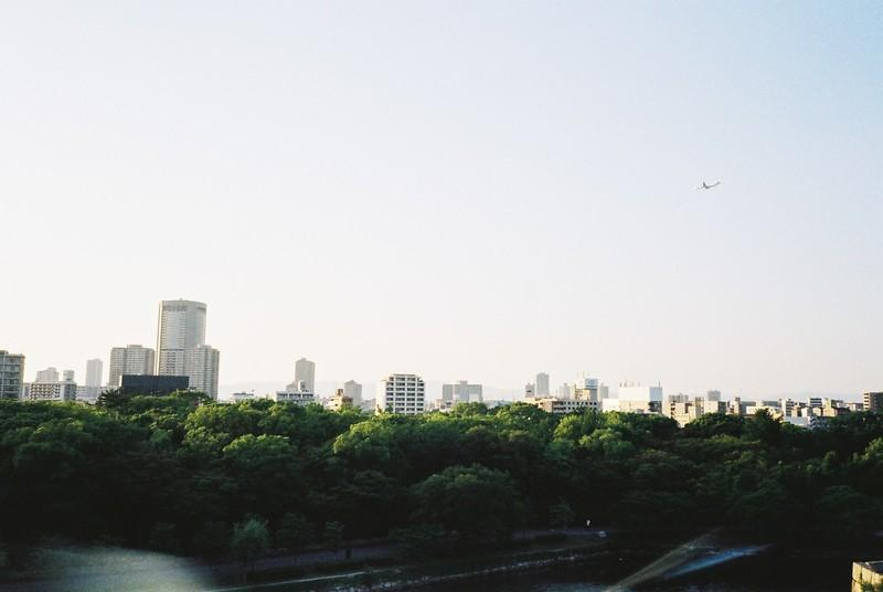 City Buildings And Green Trees