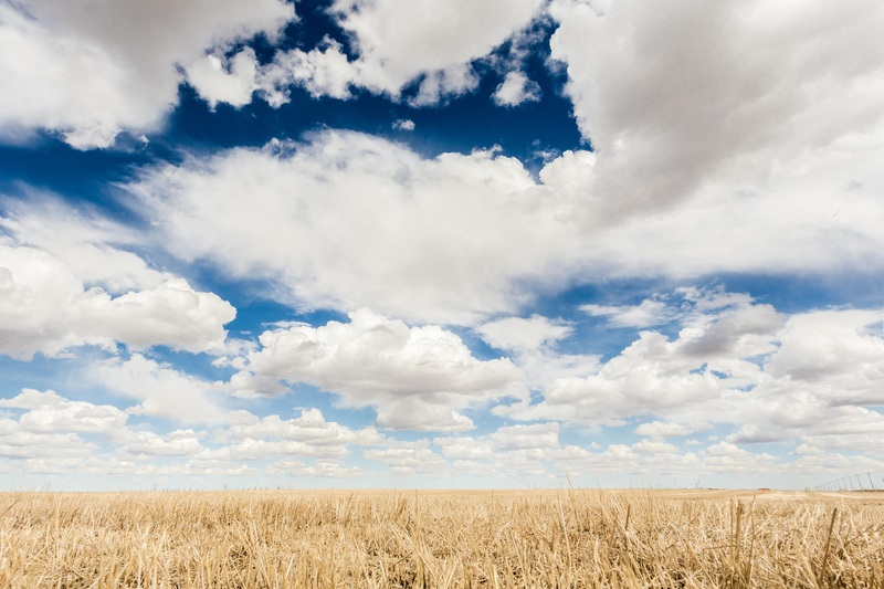 Clouds in Wheat Field