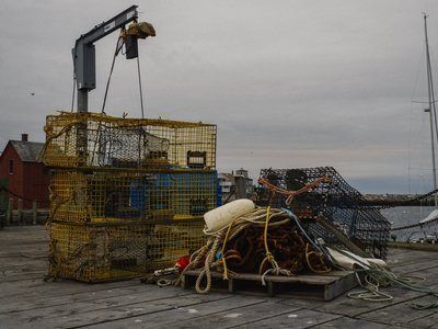 Fishing Wharf Lobster Traps And Loader