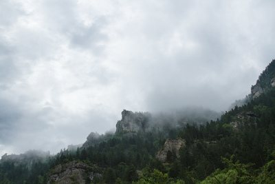 Grass-Covered Foggy Mountain