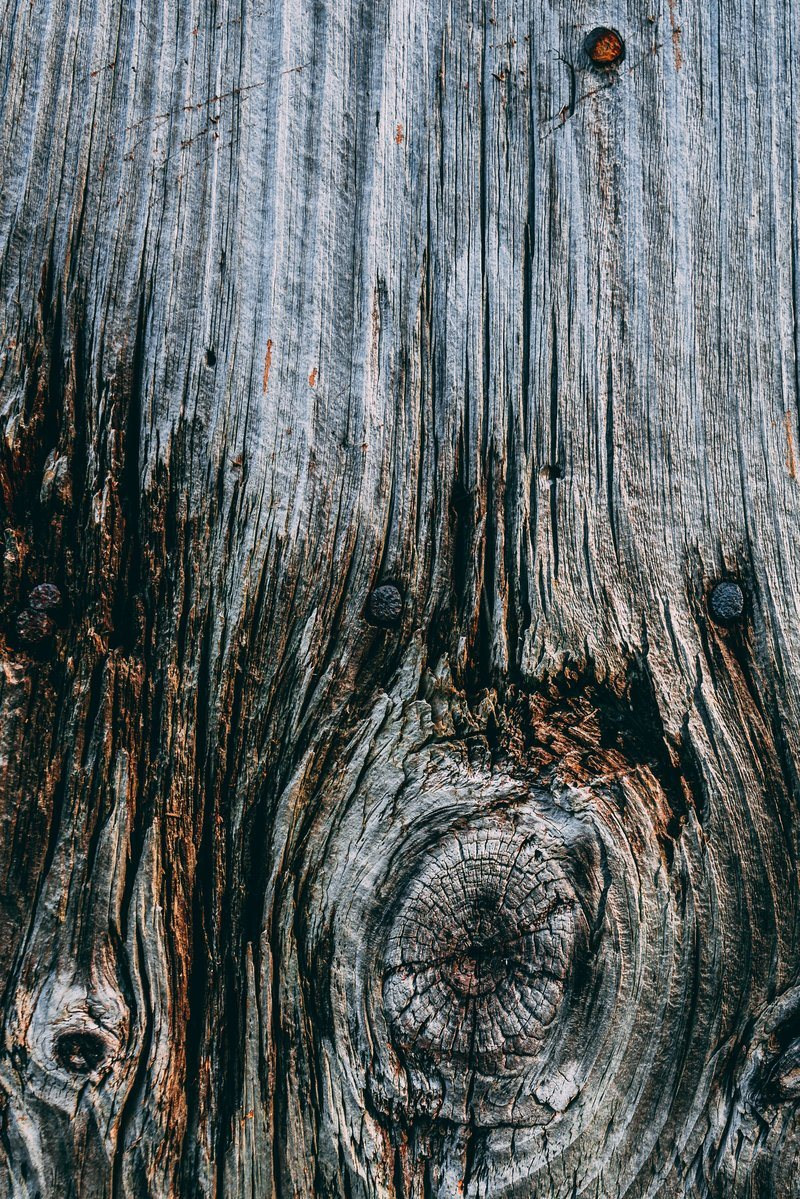 Knot In Aged Wood Texture