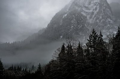 Mountain Covered Snow And Surrounding Trees