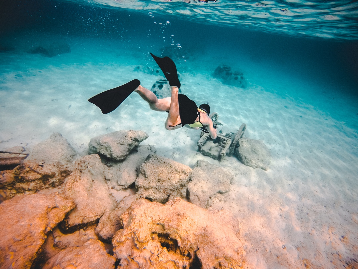 Person Wearing Diving Suit Underwater Shallow Focus