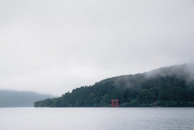 Torii By Dense Forrest By Water