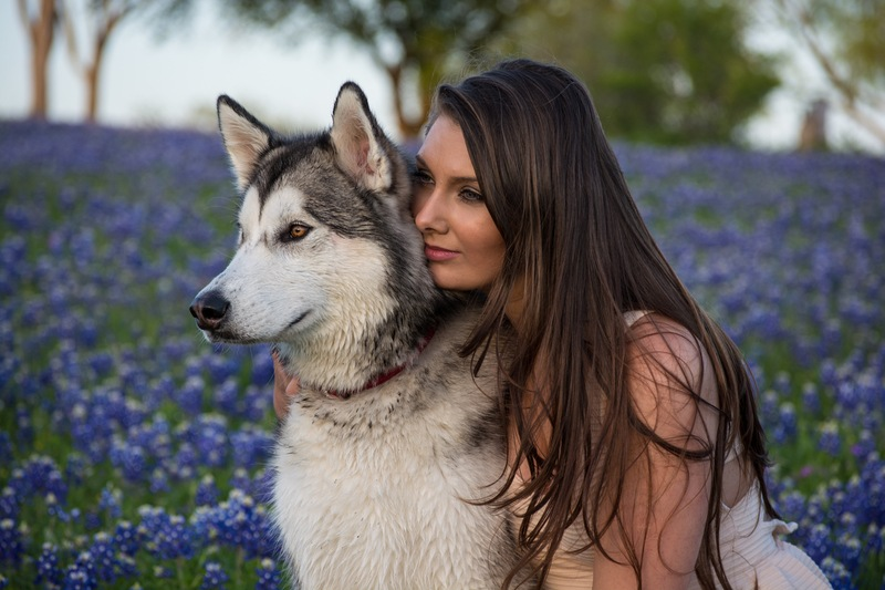 Woman Beside White And Black Siberian Husky with Purple Flowers