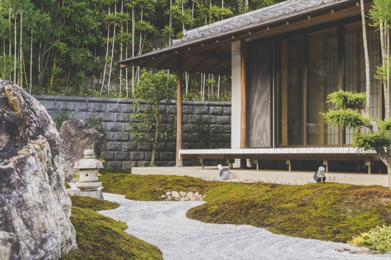 Wooden House with Glass Sliding Door Beside Trees